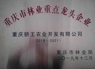 重庆市林业重点龙头企业