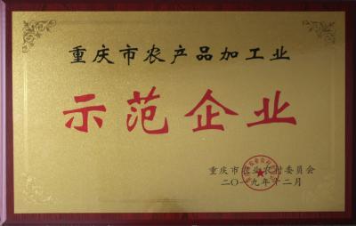 重庆市农产品加工业示范企业